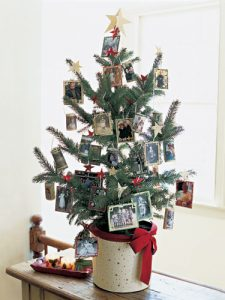 5508c6a40275f-trim-tree-memories-1204-lgn